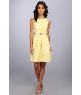 Tahari by ASL Lucia Dress Womens Dress (Yellow)