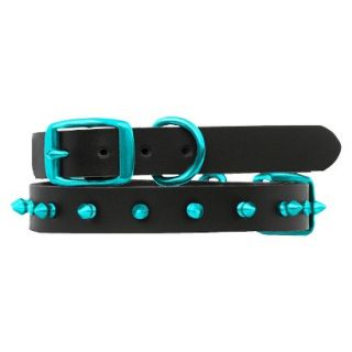 Platinum Pets Black Genuine Leather Dog Collar with Spikes   Teal (11   15)