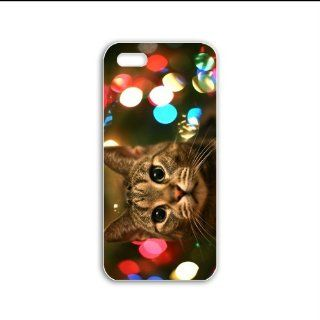 Design Apple Iphone 5/5S Animals Series staring cat animal Black Case of Hallowmas Case Cover For Lady Cell Phones & Accessories
