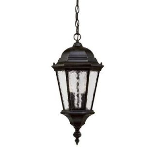 Acclaim Lighting Telfair Collection Hanging Lantern 2 Light Outdoor Marbleized Mahogany Light Fixture 5516MM