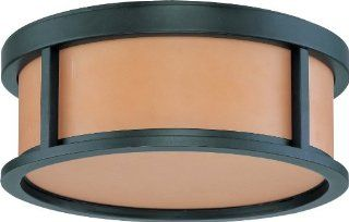 Nuvo Lighting 60/3831 Two Light Down Lighting Flush Mount Ceiling Fixture from the Odeon Collection, Aged Bronze   Close To Ceiling Light Fixtures
