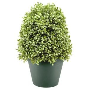National Tree Company 15 in. Boxwood Artificial Tree in Dark Green Round Plastic Urn LBX4 15 1