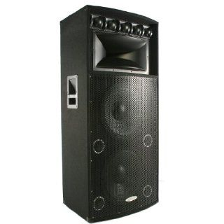 Patron by Mr Dj PSD7000 Professional Dual 18 Inch 8 Way Speaker 7000 Watts Max Peak Momentary Power Musical Instruments