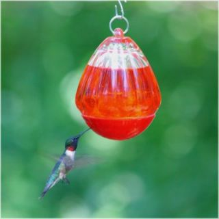 Bee Resistant Hummingbird Feeder   Bird Feeders