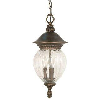 Nuvo 60/789 Hanging Lantern with Clear Melon Seed Glass, Platinum Gold   Ceiling Pendant Fixtures
