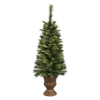 Potted Euclid Mix Pine Pre lit Tabletop Christmas Tree   Christmas Trees