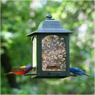Birdscapes Sunflower Garden Lantern Bird Feeder   Bird Feeders