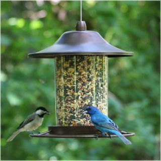 Perky Pet Small Panorama Bird Feeder   Bird Feeders