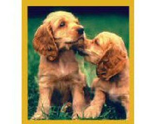 Cocker Spaniel Puppies Fridge Magnet Toys & Games