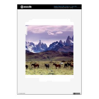 Horse Andes Mountains Argentina Skins For iPad 3