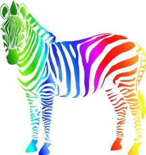 PRESCHOOL CLASSROOM Colorful Zebra Zoo Animal Wall Sticker Vinyl   Best Selling Cling Transfer Decal Picture Art Graphic Design Kid Boy Girl Child Color505 Size  40 Inches X 40 Inches   22 Colors Available   Wall Decor Stickers