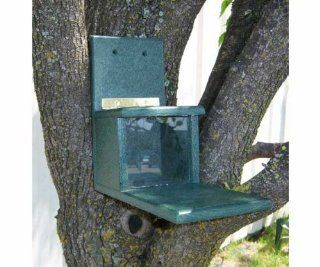 Recycled Plastic Squirrels Only Feeder   Keeps the Bird Away  Patio, Lawn & Garden
