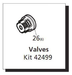 Valve Kit for SRMW Pumps (AR42499)  Pressure Washer Pumps  Patio, Lawn & Garden