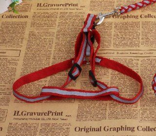 Pet Leash Dog Lead Reflective Harness Leather Dog Leash Dog Rope Dog Leashes Dog Harness for Outdoors, take a Walk, training, safer Walking At Night, leash for Dog (S size red)