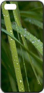 After Rain Grass iPhone 4 Designer Case Cover Protector Cell Phones & Accessories