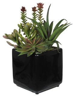 House of Silk Flowers Artificial Succulent Garden (B) in Black Cube Vase   Artificial Succulent Plants