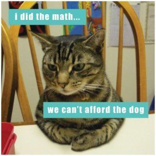 I Can Has Cheezburger I Did The Math Cat Refrigerator Magnet Kitchen & Dining