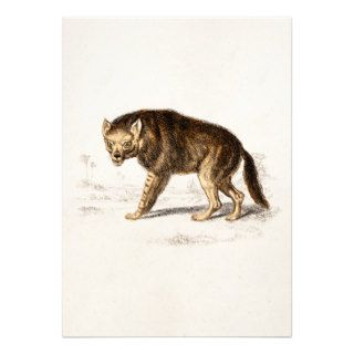 Vintage 1800s Hyena Dog   Hyenas Retro Template Custom Invitations