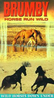 Brumby Horse Run Wild [VHS] Brumby Horse Run Wild Movies & TV