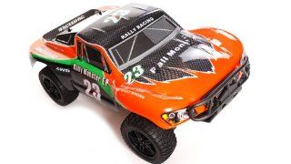 BRUSHLESS 1/10 2.4Ghz Exceed RC Electric Rally Monster RTR Off Road Rally Car COLOR VARIES  SENT AT RANDOM