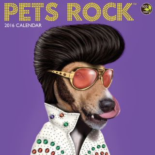 2016 Pets Rock Wall Calendar by TFPublishing