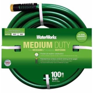 WaterWorks 5/8 in. Dia x 100 ft. Medium Duty Water Hose WWT4058100C