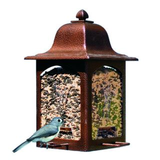Birdscapes Tulip Garden Lantern Hopper Bird Feeder
